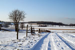 Winterlandschaft rund um die Hundepension